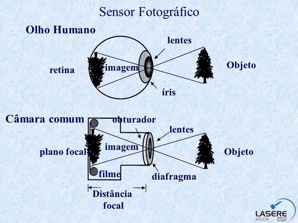 Sensor Fotográfico Olho Humano Câmara comum lentes Objeto imagem