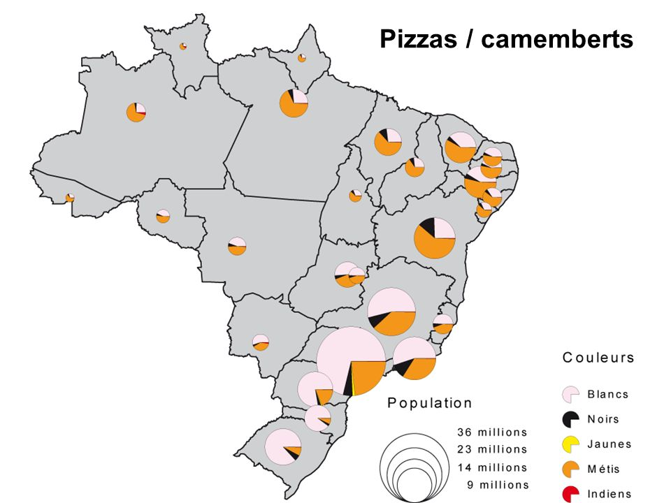 Pizzas / camemberts