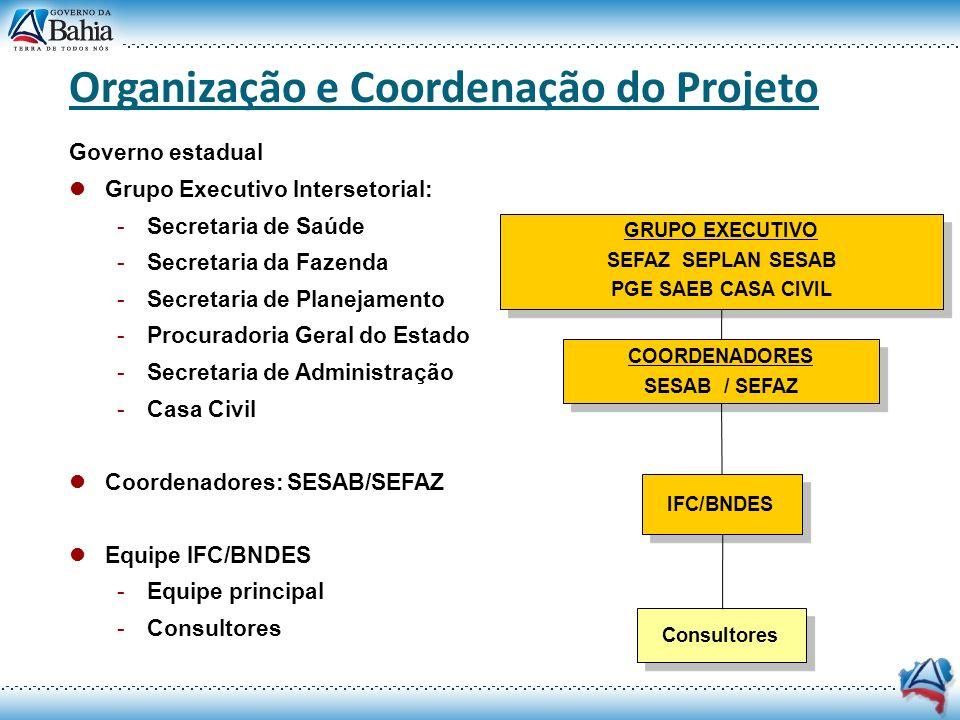 Organização e Coordenação do Projeto