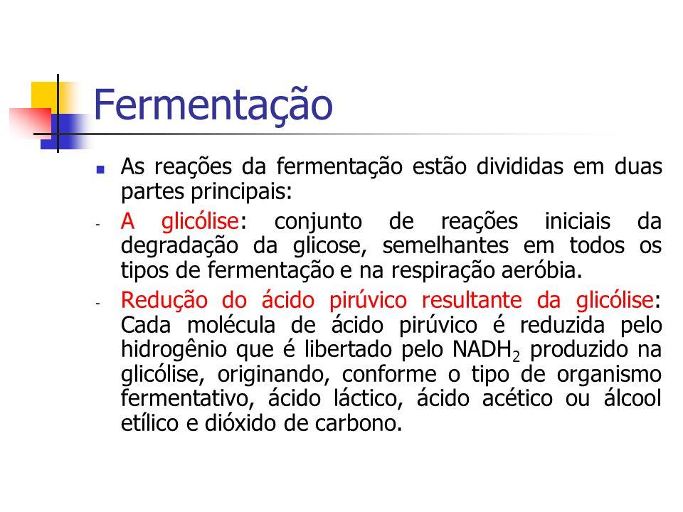 Fermentação As reações da fermentação estão divididas em duas partes principais: