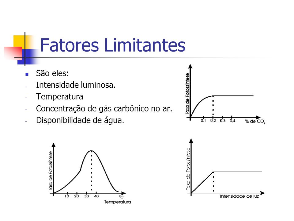 Fatores Limitantes São eles: Intensidade luminosa. Temperatura