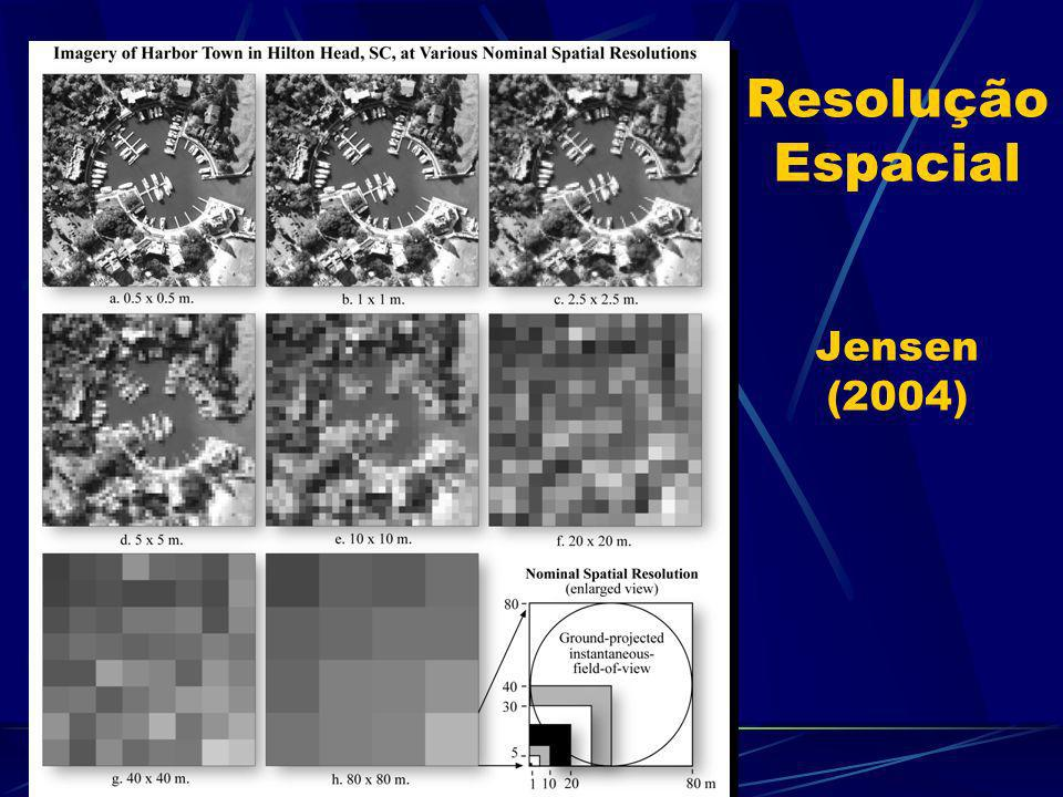 Resolução Espacial Jensen (2004)
