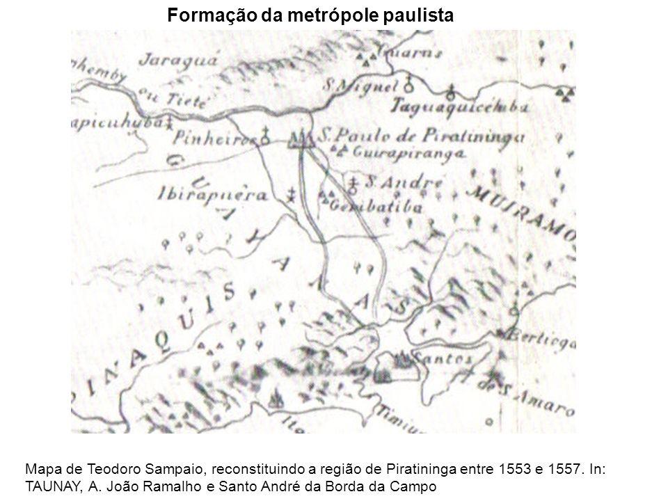 Formação da metrópole paulista