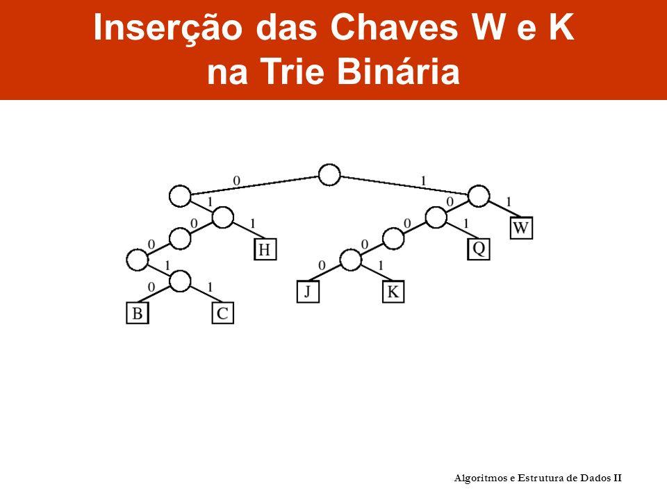 Inserção das Chaves W e K