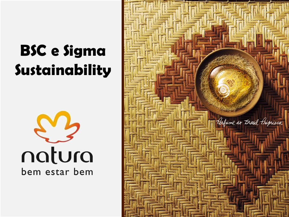 BSC e Sigma Sustainability
