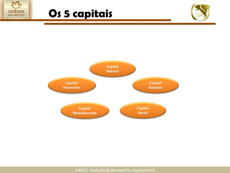 Os 5 capitais Capital Natural Capital Financeiro Capital Humano