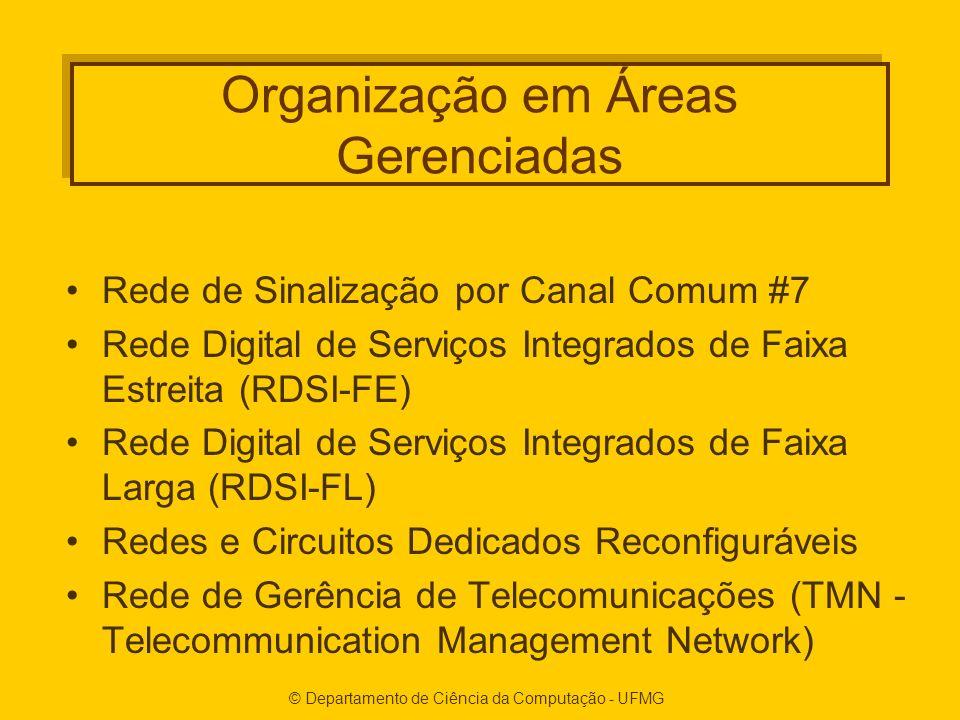 Organização em Áreas Gerenciadas