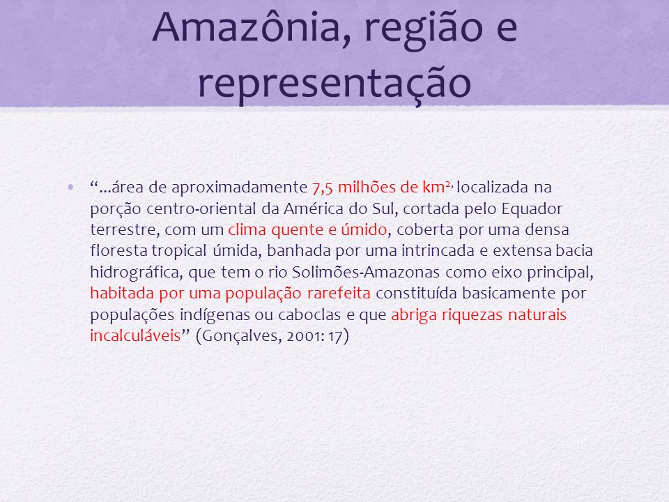 Amazônia, região e representação