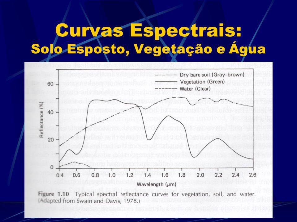Curvas Espectrais: Solo Esposto, Vegetação e Água