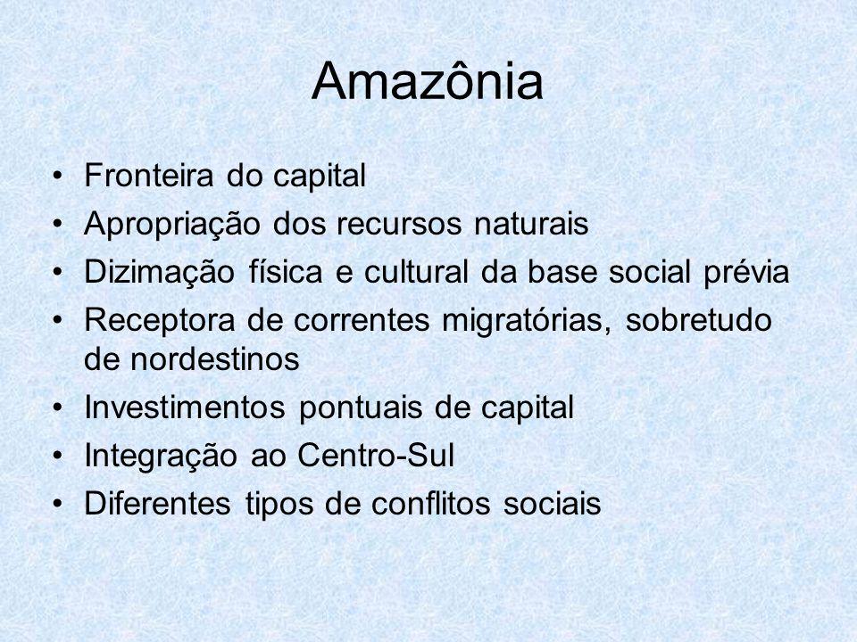 Amazônia Fronteira do capital Apropriação dos recursos naturais