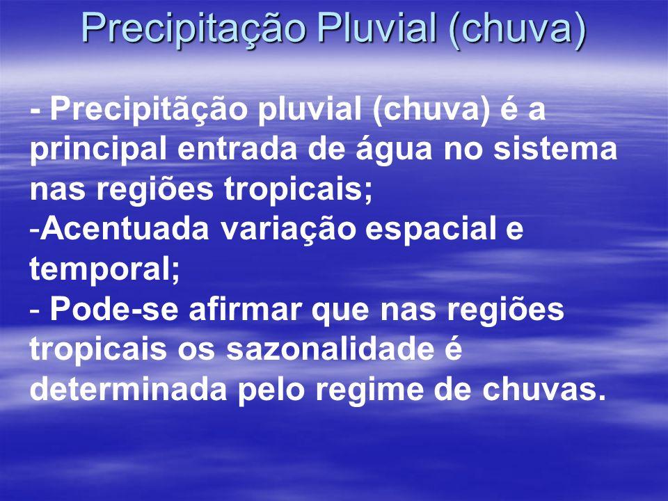 Precipitação Pluvial (chuva)