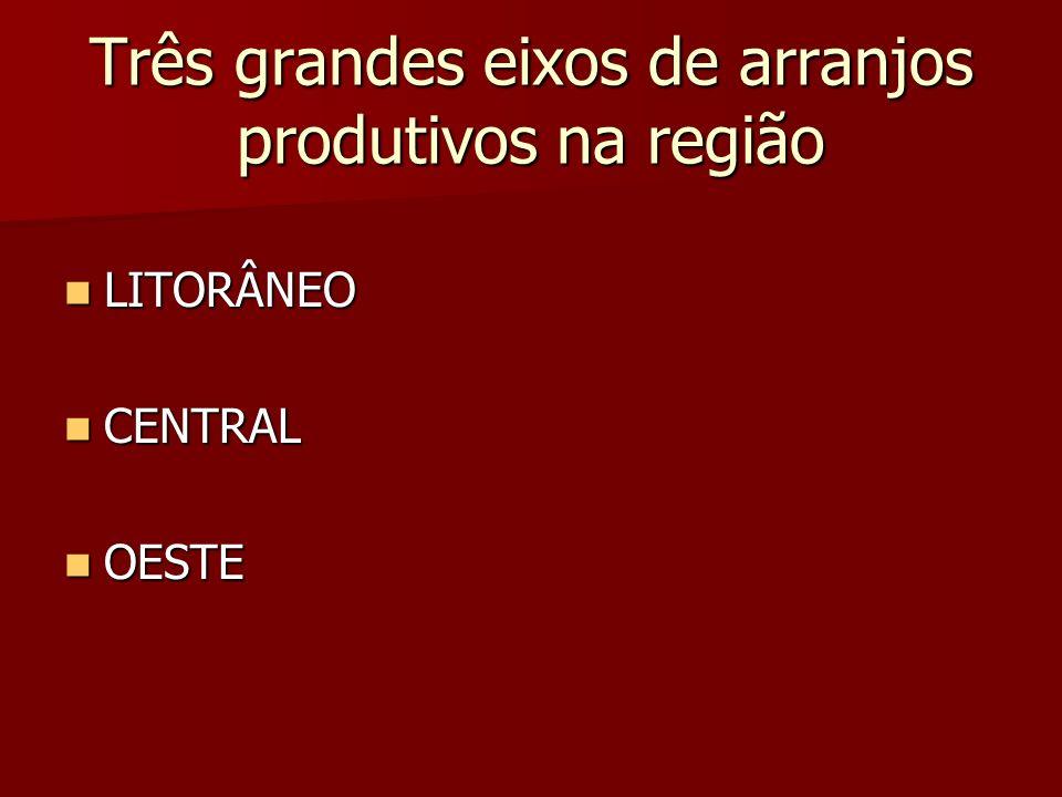 Três grandes eixos de arranjos produtivos na região