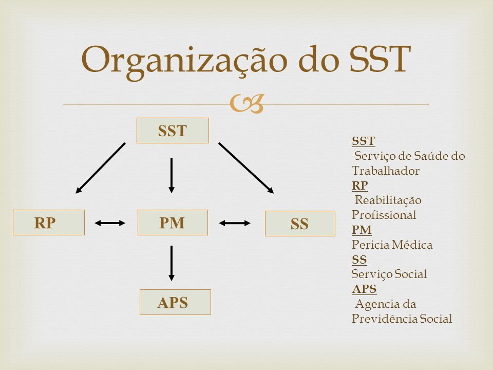 Organização do SST SST RP PM SS APS SST