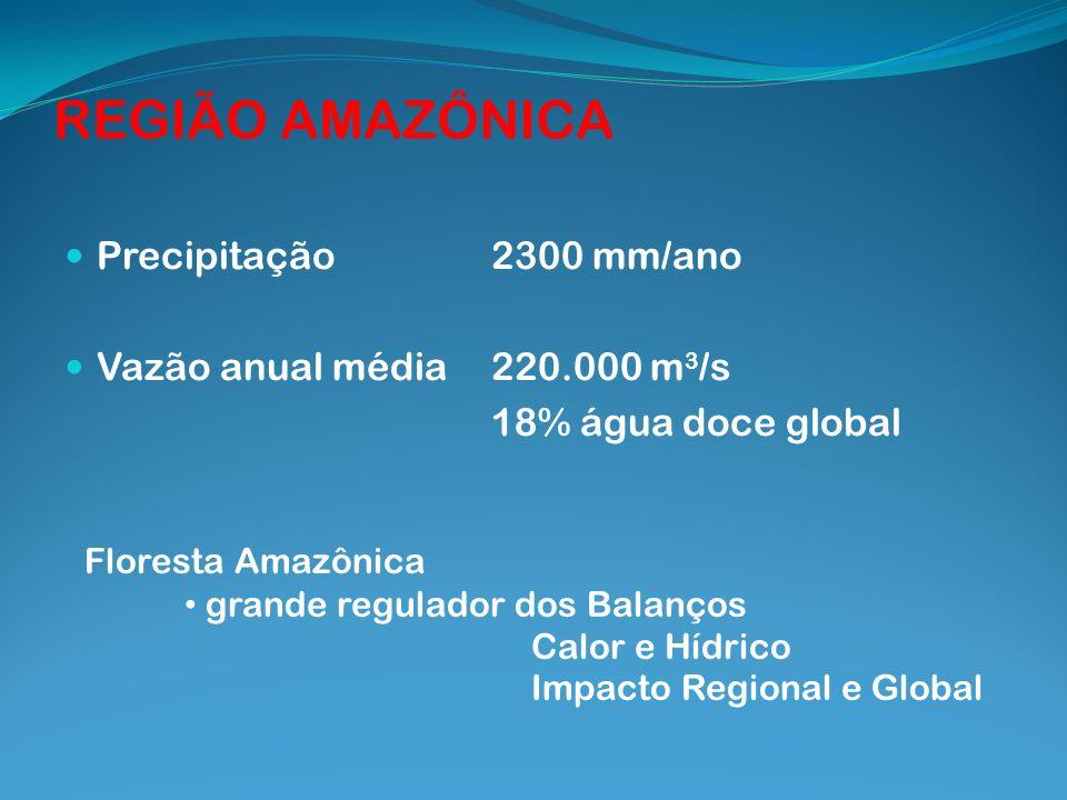REGIÃO AMAZÔNICA Precipitação 2300 mm/ano