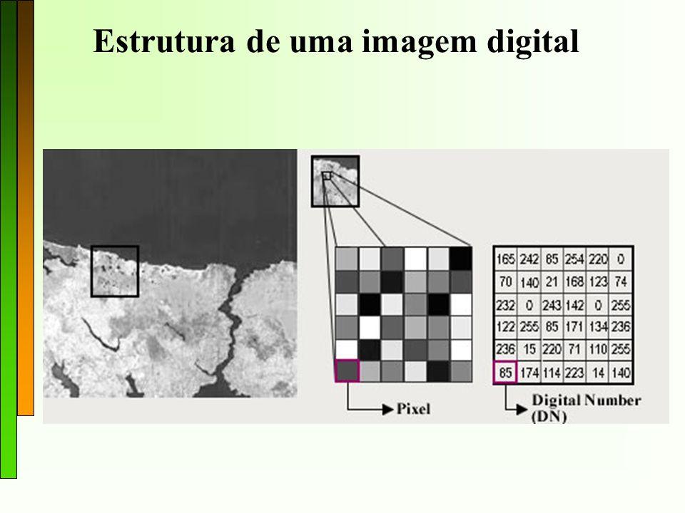 Estrutura de uma imagem digital