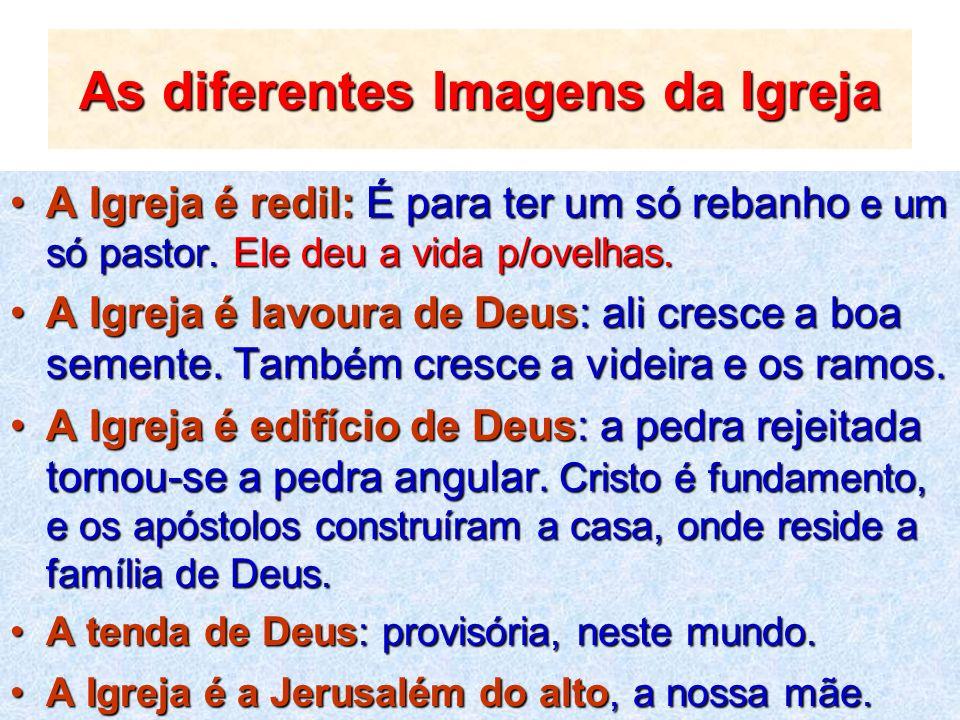 As diferentes Imagens da Igreja
