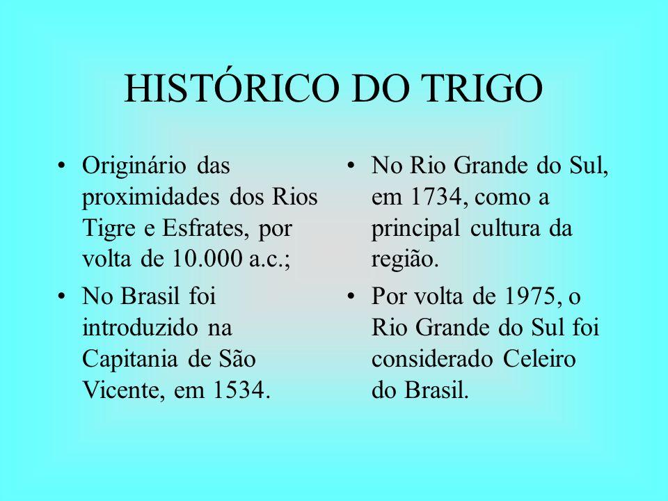 HISTÓRICO DO TRIGO Originário das proximidades dos Rios Tigre e Esfrates, por volta de 10.000 a.c.;