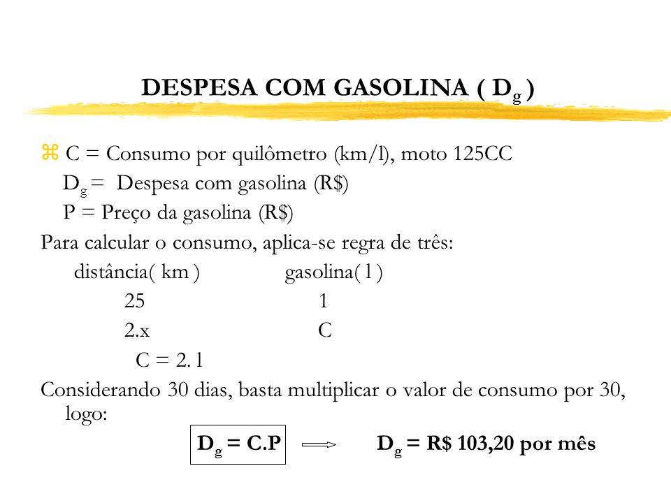 DESPESA COM GASOLINA ( Dg )