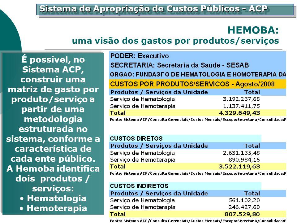 HEMOBA: uma visão dos gastos por produtos/serviços