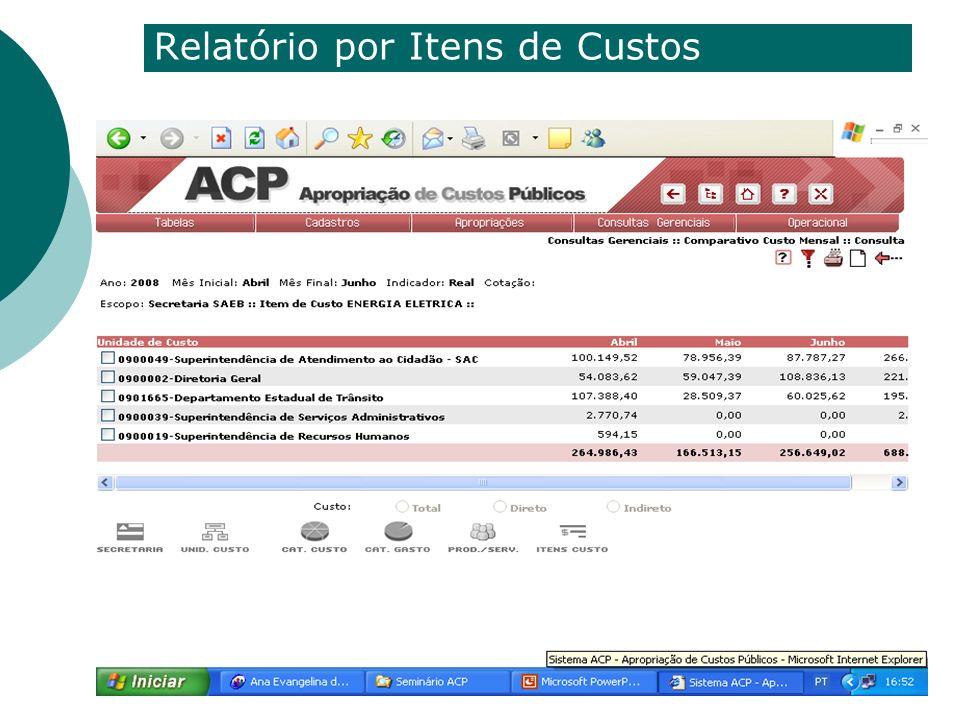 Relatório por Itens de Custos