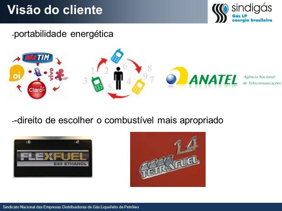 Visão do cliente -portabilidade energética