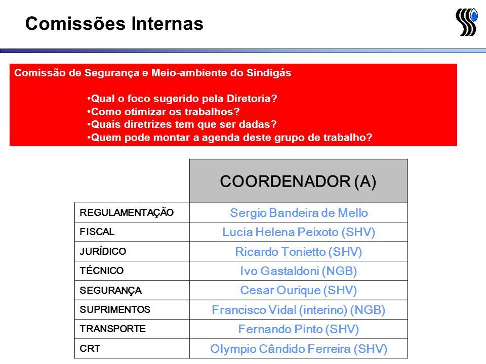 Comissões Internas COORDENADOR (A) Sergio Bandeira de Mello