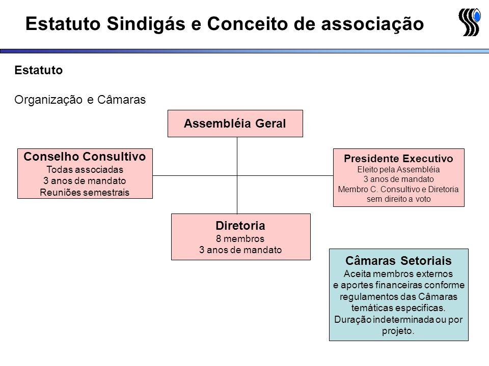 Estatuto Sindigás e Conceito de associação