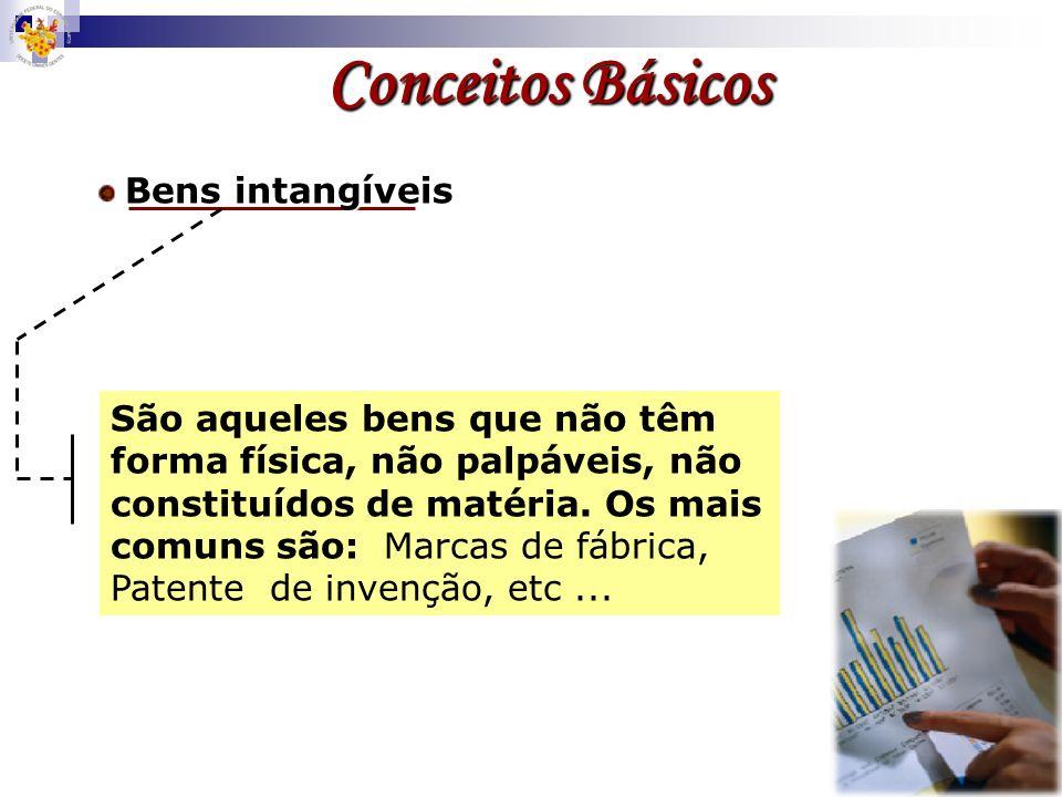 Conceitos BásicosBens intangíveis.