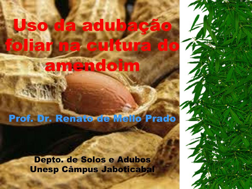 Uso da adubação foliar na cultura do amendoim Prof. Dr