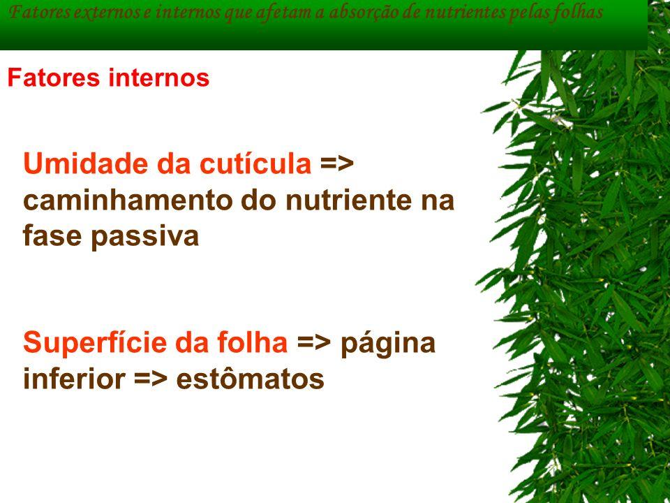 Umidade da cutícula => caminhamento do nutriente na fase passiva