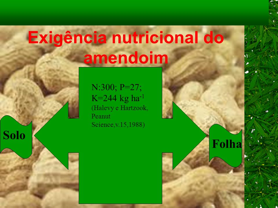 Exigência nutricional do amendoim