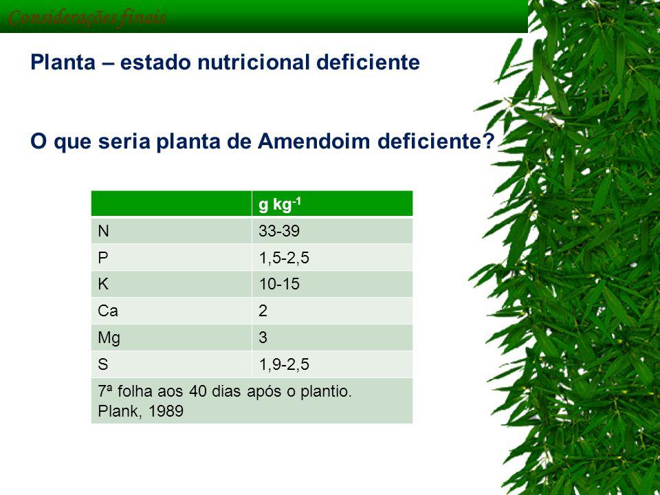Planta – estado nutricional deficiente