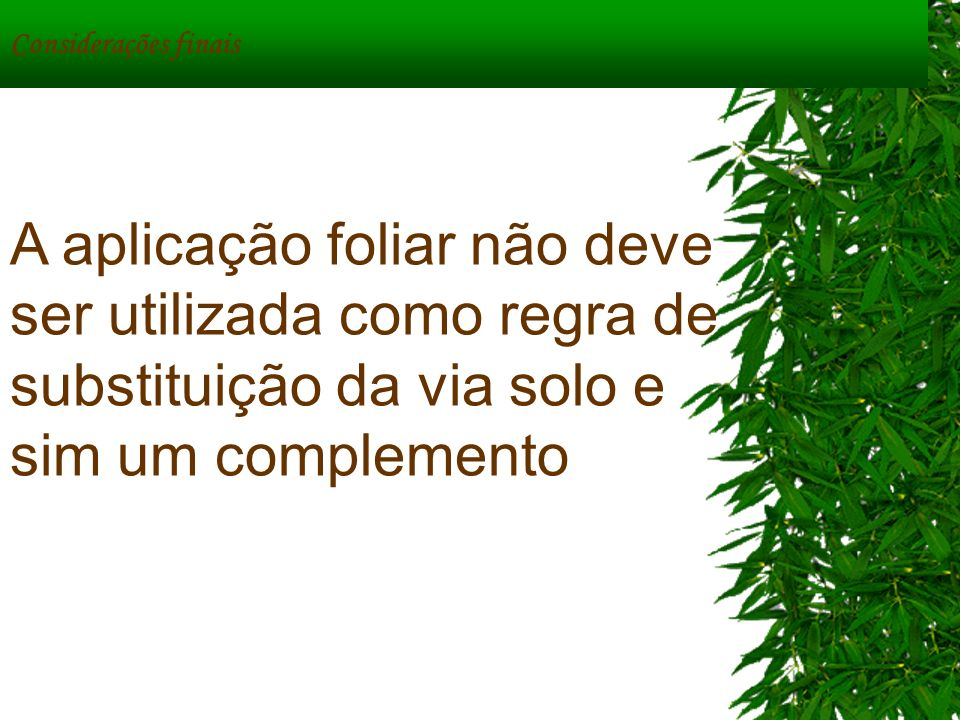 Considerações finais A aplicação foliar não deve ser utilizada como regra de substituição da via solo e sim um complemento.