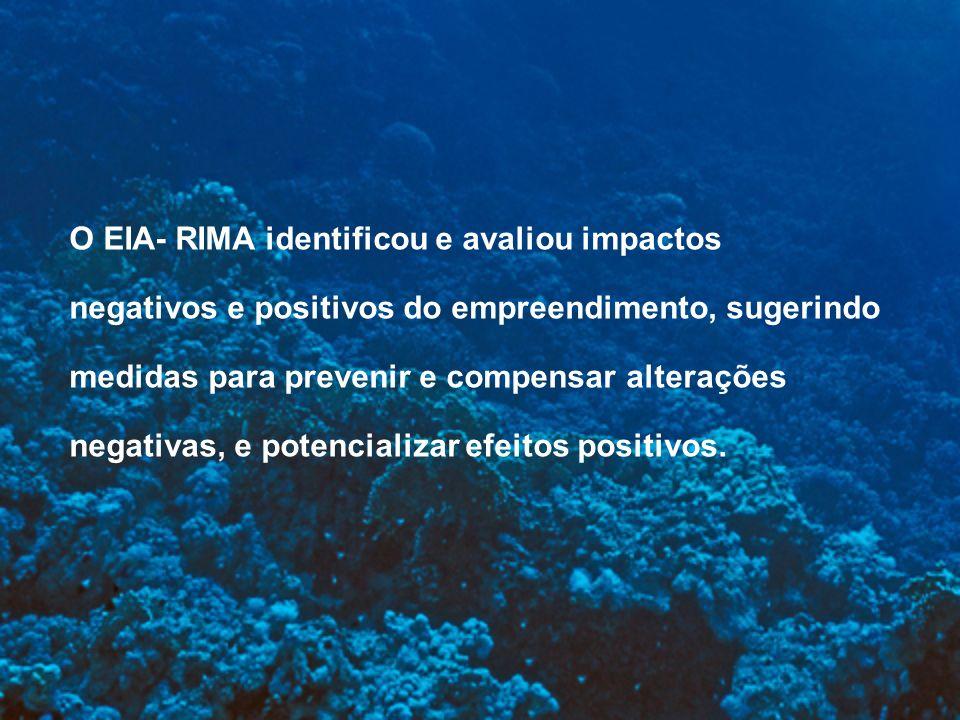 O EIA- RIMA identificou e avaliou impactos