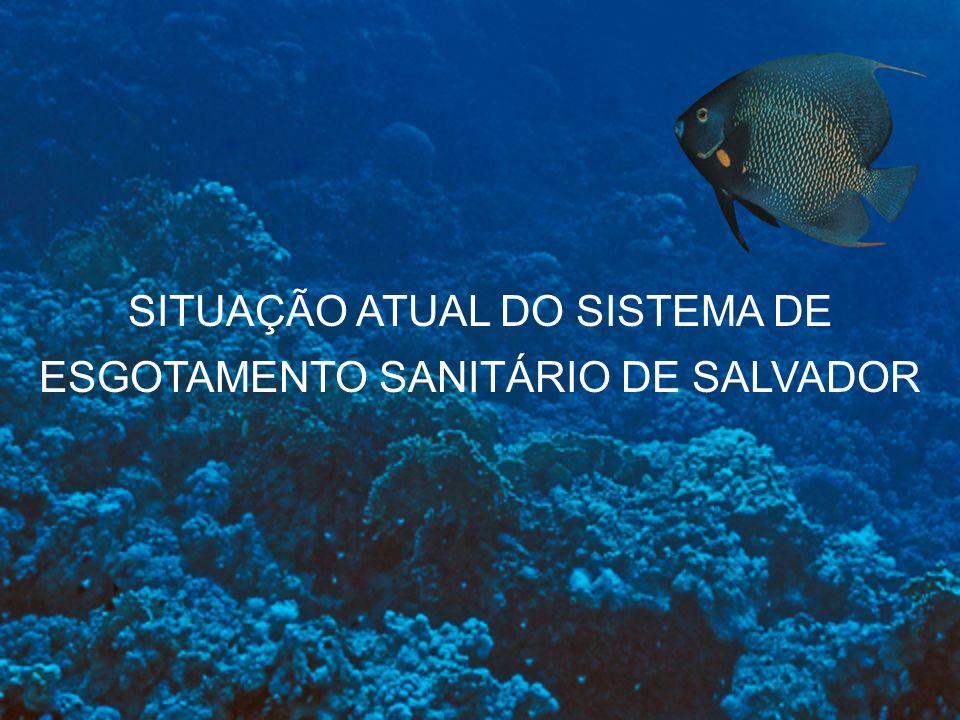 SITUAÇÃO ATUAL DO SISTEMA DE ESGOTAMENTO SANITÁRIO DE SALVADOR