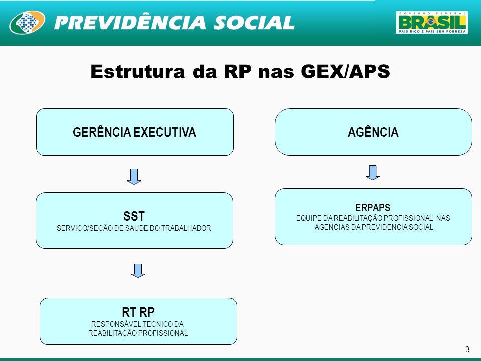 Estrutura da RP nas GEX/APS