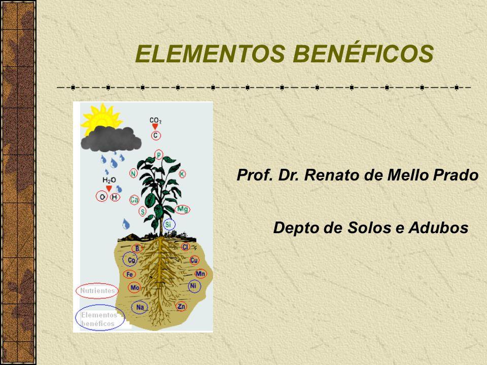 ELEMENTOS BENÉFICOS Prof. Dr. Renato de Mello Prado