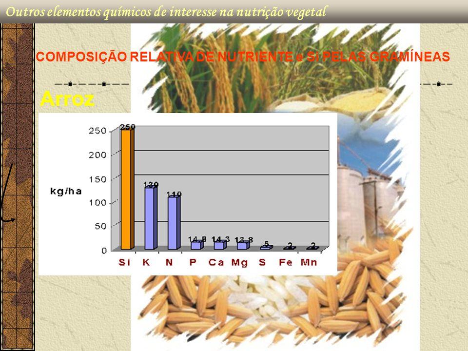 Arroz Outros elementos químicos de interesse na nutrição vegetal