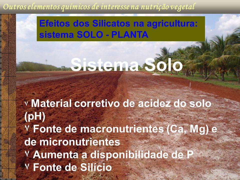 Sistema Solo ۷ Fonte de macronutrientes (Ca, Mg) e de micronutrientes