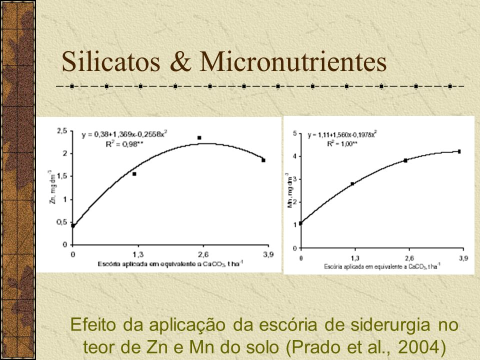 Silicatos & Micronutrientes