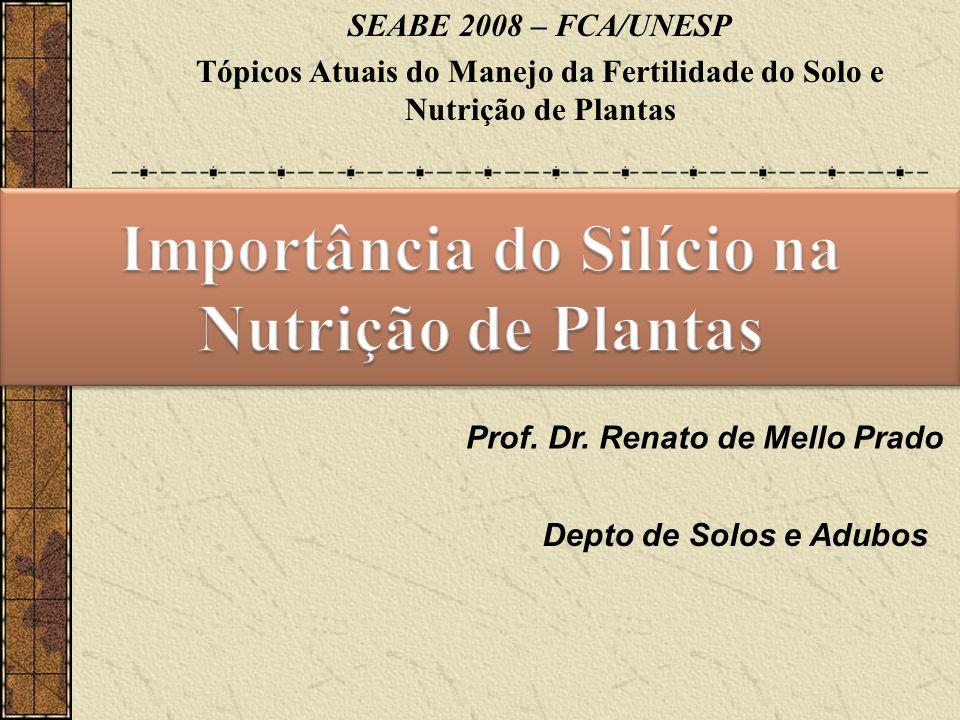 Importância do Silício na Nutrição de Plantas