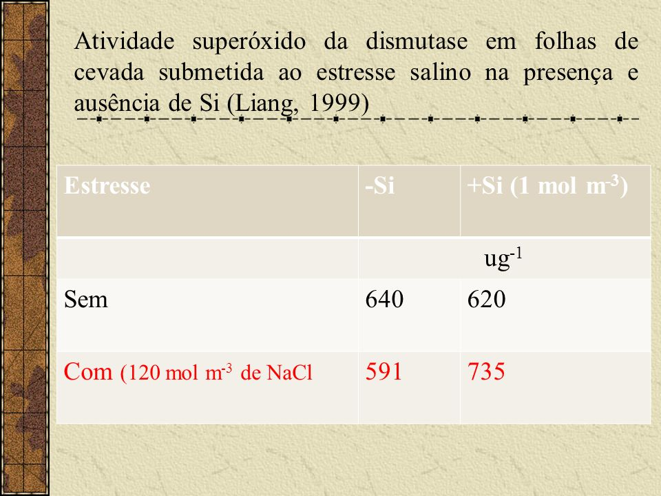 Atividade superóxido da dismutase em folhas de cevada submetida ao estresse salino na presença e ausência de Si (Liang, 1999)