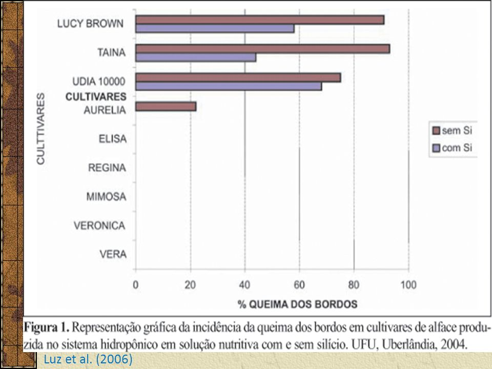 Luz et al. (2006)