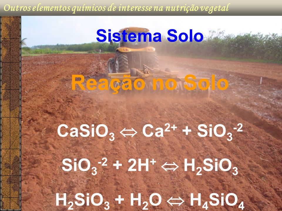 Reação no Solo Sistema Solo CaSiO3  Ca2+ + SiO3-2