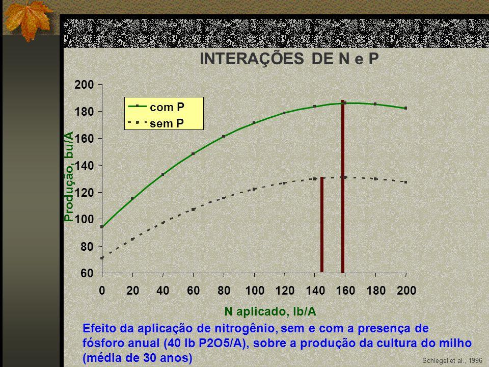 INTERAÇÕES DE N e P Produção, bu/A N aplicado, lb/A