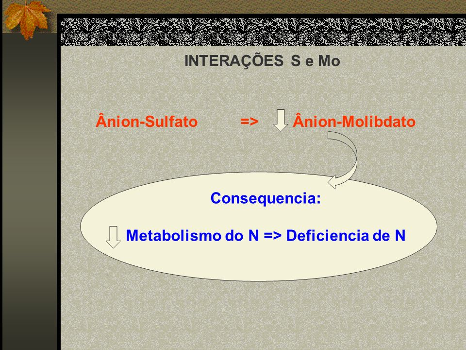 Metabolismo do N => Deficiencia de N