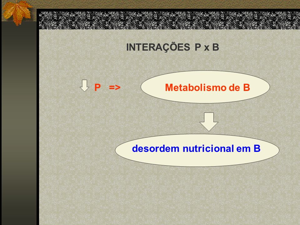 P => Metabolismo de B