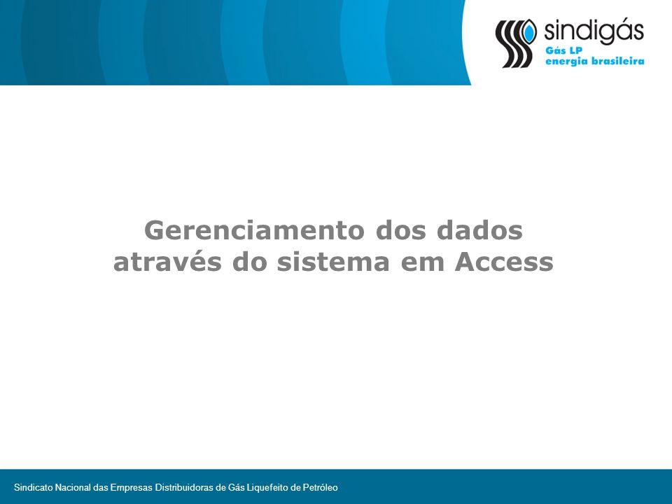 Gerenciamento dos dados através do sistema em Access