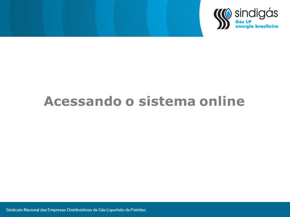Acessando o sistema online