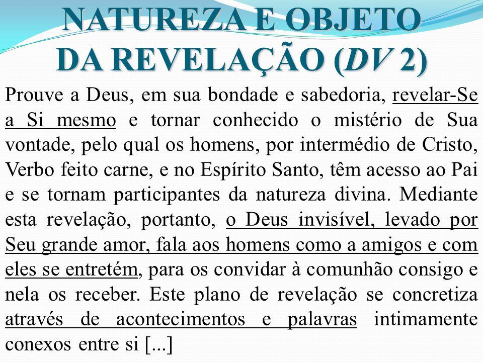 NATUREZA E OBJETO DA REVELAÇÃO (DV 2)